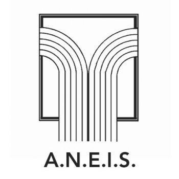 logo aneis associazione nazionale esperti infortunistica stradale